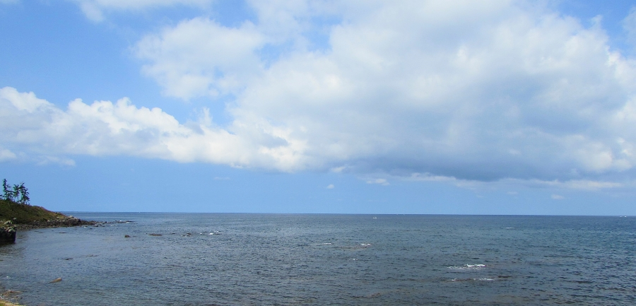 三国海浜自然公園から日本海を臨む