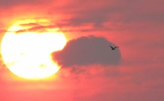 sunset201408